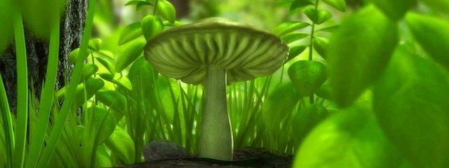 3d-graphics_green_mushroom_005310_