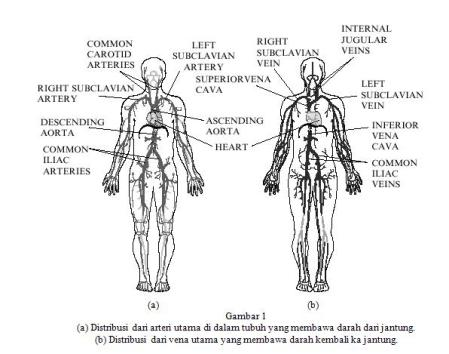 Jurnal Kesehatan Tentang Penyakit Dbd Pdf